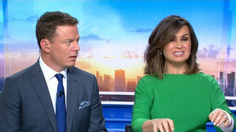 Lisa Wilkinson reveals she has Carpal Tunnel Syndrome