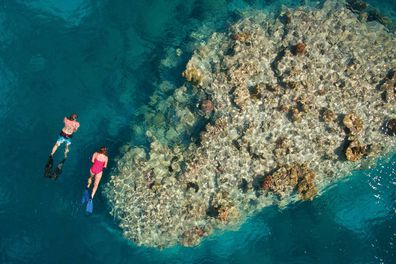 The island is a snorkelling and diving hotspot. Jen Dainer / Tourism and Events Queensland