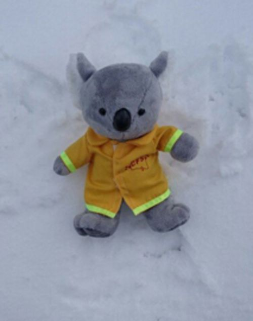 A firie enjoying the snow in the Adelaide Hills. (Country Fire Service)