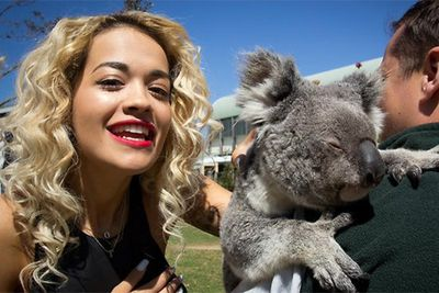 Before Kim made it cool, Rita Ora was all about getting hands-on with the Aussie wildlife ...<br/><br/>On her last trip to Aus, the British singer couldn't wait to get up close and personal with the fuzzy Sydneysiders at Taronga Zoo. <br/>