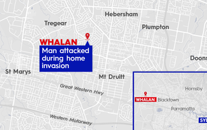 Man attacked with hammer in Sydney home invasion