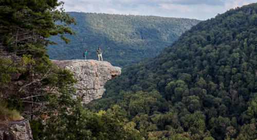 Andrea Norton was on a class trip at Ozark National Forest for her environmental science major when she fell while taking a selfie at the popular Hawksbill Crag lookout point.