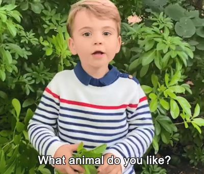 Prince Louis 'interviews' David Attenborough, October 2020