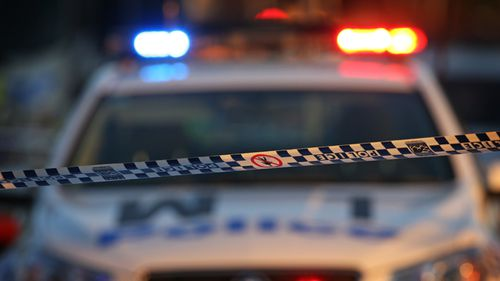 Woman seriously injured after Christmas morning meat cleaver attack