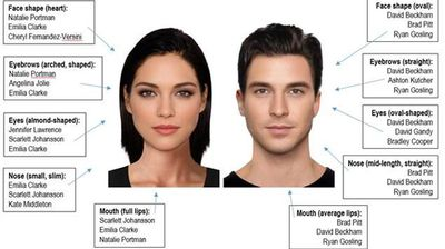 "<p>The ""ideal"" female face featured brown eyes and hair, full lips, a slim face, large eyes and high cheekbones, complete with ""perfect"" symmetry.</p><p> The ""perfect"" male specimen requires blue eyes, brown hair, medium-thick eyebrows, average lips, a square jawline and an oval-shaped face. </p><p> </p>"