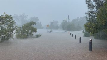 A flooded park at Nambucca Heads, south of Coffs Harbour.