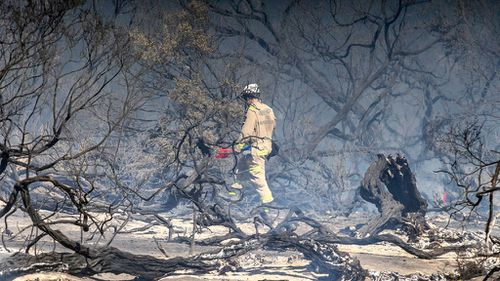 A firefighter walking through the charred remains of Cheltenham Park. (Image: AAP)