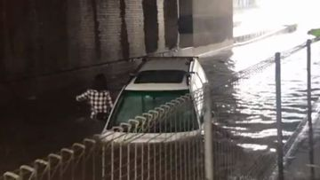 'Idiot': Moment tourist drives straight into floodwaters