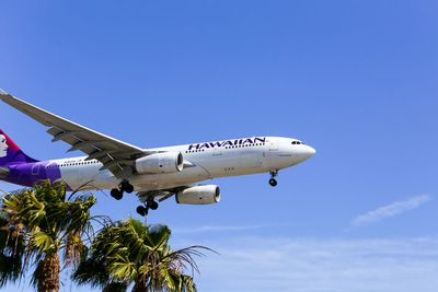 5. Hawaiian Airlines