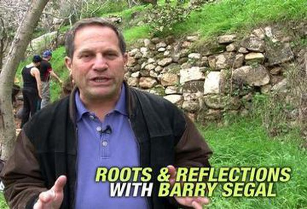 Roots & Reflections with Barry Segal