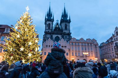 The installation of the Christmas tree in Prague