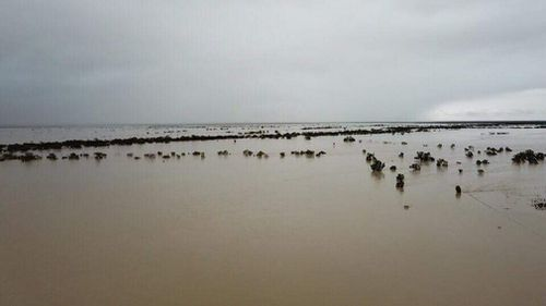 North Queensland flood weather government funding