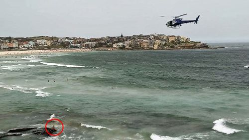 Man arrested after alleged sexual harassment on Bondi Beach