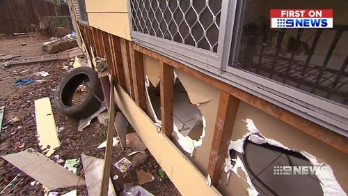 Hendrik believes the damage happened in as little as 24hrs. Image: 9News