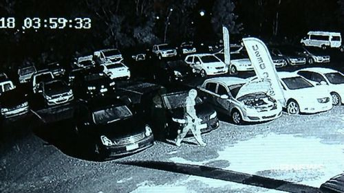 A group of thieves were caught on CCTV cameras ransacking a Yerongpilly car yard over the weekend (Supplied).