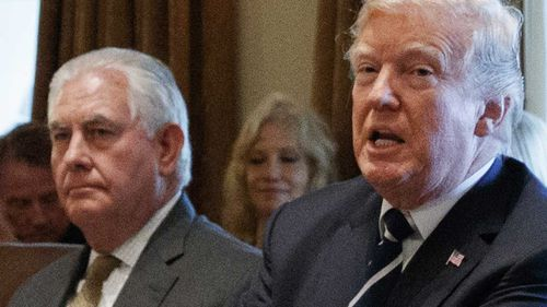 Rex Tillerson has said the president is 'undisciplined' and 'doesn't like to read.