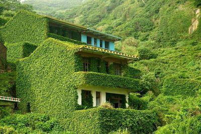 <strong>Houtou Wan Village, China</strong>