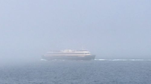 The Manly ferry in Sydney made its way through fog this morning.