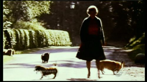 The Queen has in recent years decided to stop breeding the corgis due to her age.