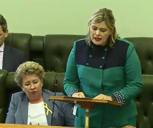 MP Nikki Boyd is pregnant, and has spoken in favour of decriminalizing abortion in QLD. She told the house how she'd been sent 'vile vitriol' for her support of the reform.