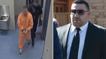 Michael Ibrahim is accused of threatening to kill his sister.