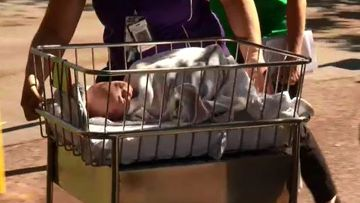'Really scary': Newborns, women in labour evacuated following spill