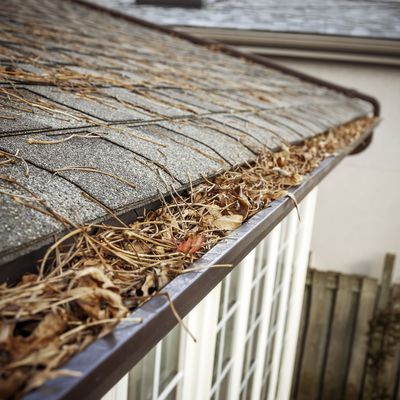 Check on your gutters