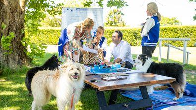 Celebrity Apprentice Australia 2021 puppies challenge