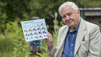 Sir David Attenborough has championed the cause of the natural environment for his entire life.