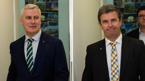 Veterans Affairs Minister Michael McCormack and Families Minister David Gillespie have confirmed they will contend to be the next Nationals leader. (AAP)
