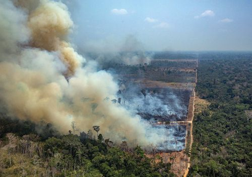 Smoke rises from the fire at the Amazon forest in Novo Progresso in the state of Para, Brazil.