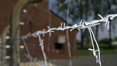 Thousands killed in German concentration camp