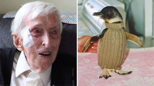 Australia's oldest man still knitting for human and animal friends at 109