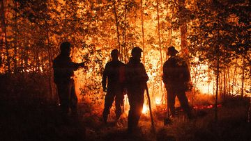 Firefighters work at the scene of forest fire near Kyuyorelyakh village at Gorny Ulus area, west of Yakutsk, in Russia.