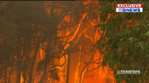 The fire was sparked by a fallen power pole. Picture: 9NEWS