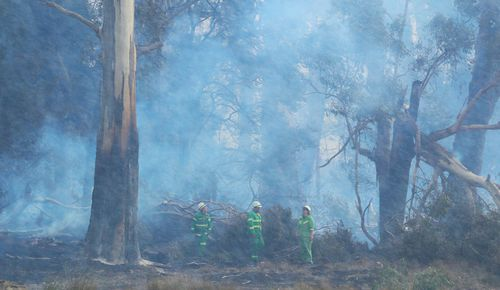 The Country Fire Authority says 15,000 hectares of land have been burnt in the fires, reducing initial estimates of 40,000 ha of devastation. (AAP)
