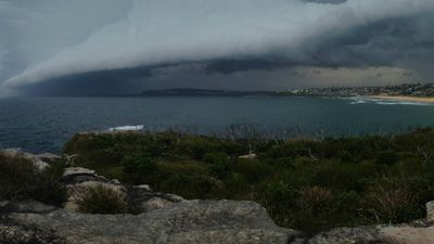 The cloud can be seen casting a huge shadow over the ocean in this shot, taken from North Curl Curl. (Supplied: Lissy Robertson)