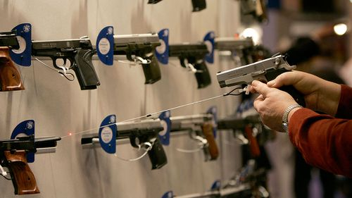 Almost one in three American adults own a gun: study