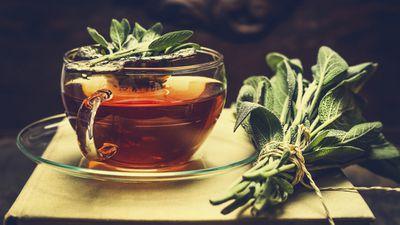 <strong>Salvia tea</strong>