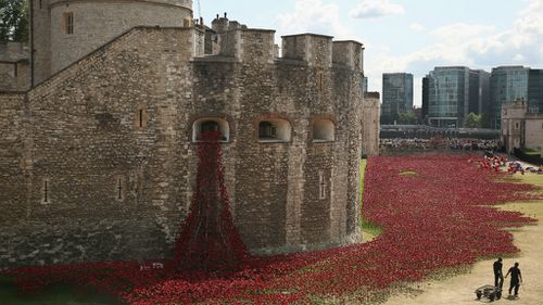 Volunteers continue to assemble an installation made up of 888,246 ceramic poppies in the moat of the Tower of London to commemorate the First World War in London, England. (Getty)