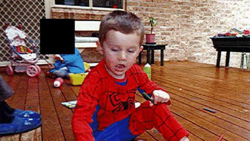 William Tyrrell photographed the morning of his disappearance.