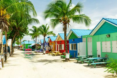 15. Barbadian