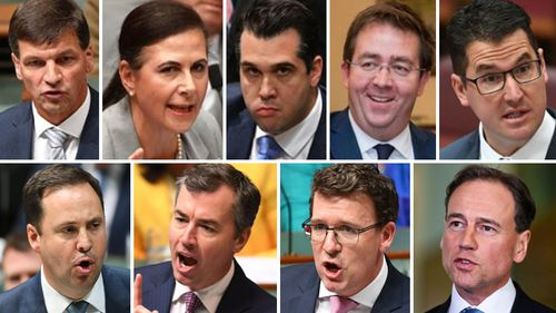 Angus Taylor, Concetta Fierravanti-Wells, Michael Sukkar, James McGrath, Steve Ciobo,  Michael Keenan, Alan Tudge and Greg Hunt have offered their resignations in a show of support for Peter Dutton.