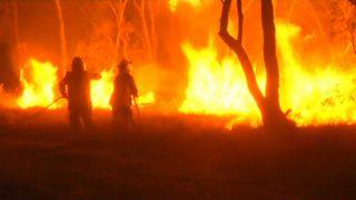QLD NSW bushfire emergency: Warnings in place as blazes burn