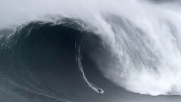 Photos of the week: Giant waves, fighting mice and the Oscars