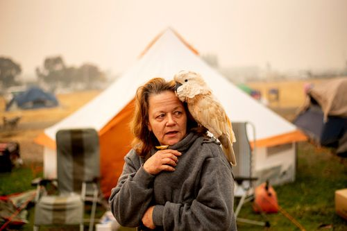 Suzanne Kaksonen, an evacuee of the Camp Fire, and her cockatoo Buddy camp at a makeshift shelter outside a Walmart store in Chico.