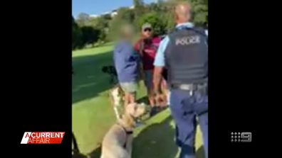 Sydney park-goers warn against crossing angry dog trainer