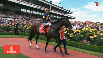 Araldo has been euthanised after breaking a leg following the Melbourne Cup.