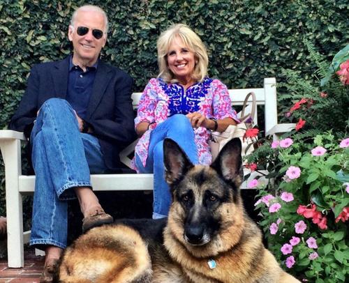 Joe and Jill Biden German Shepherd