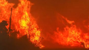 South Australian fires